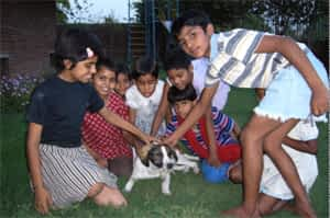 The Girls of Uttar Pradesh