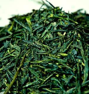 Organic Gyokuro Shade Grown Japanese Green Tea - Ingredients